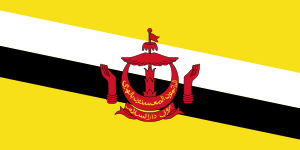 international dialing codes Brunei-Darussalam